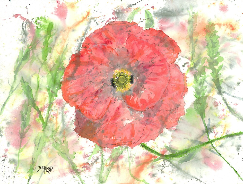 Poppy Burst Flower Fine Art Poster Print by derekmccrea