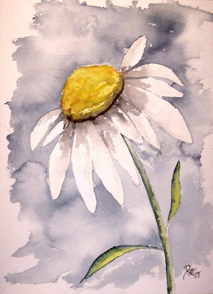 Daisy by derekmccrea
