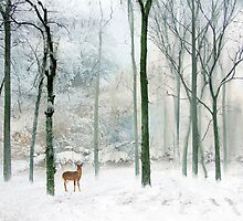 Woodland Whimsy by Jessica Jenney