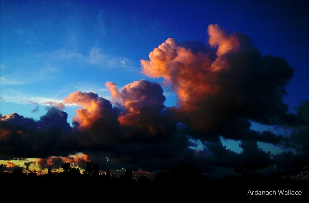 Kerikeri Sky by Ardanach Wallace