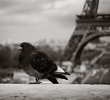 Parisienne by Ozerk Kalender