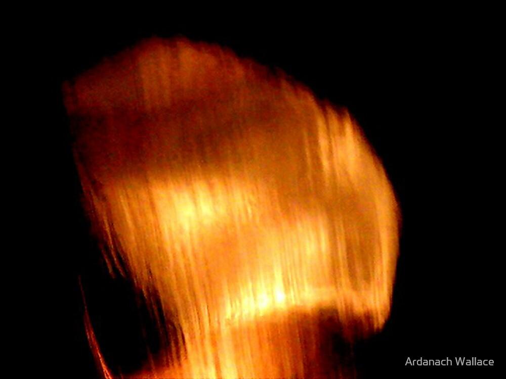 Sad Phoenix by Ardanach Wallace