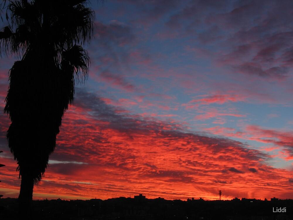Bondi sunset by Liddi