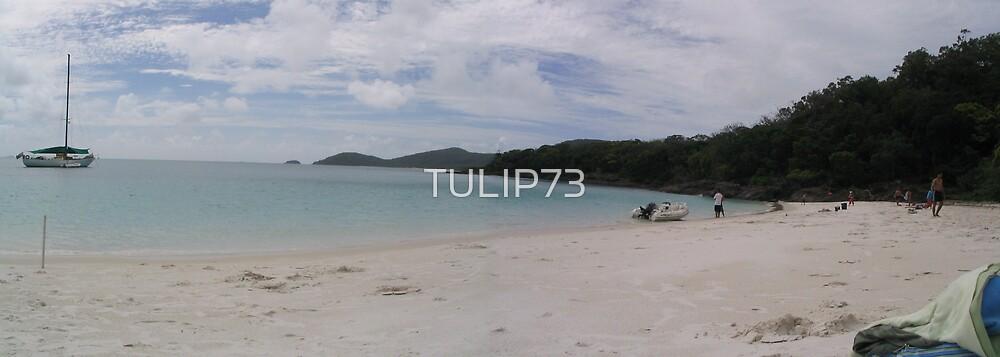 WHITEHAVEN BEACH by TULIP73