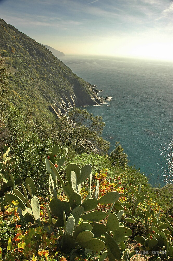 Cinque Terra 1 by KylieForster