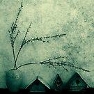 Grunge Still by James McKenzie