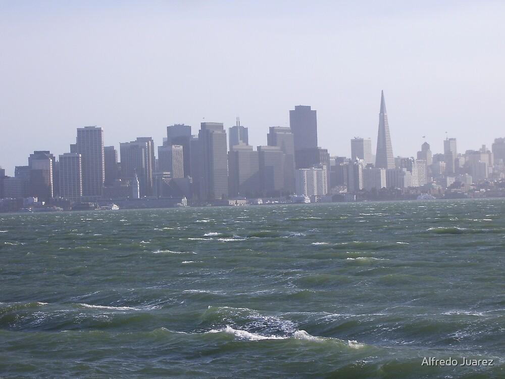 The San Francisco bay by Alfredo Juarez