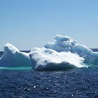 Iceberg...on close up by rog99