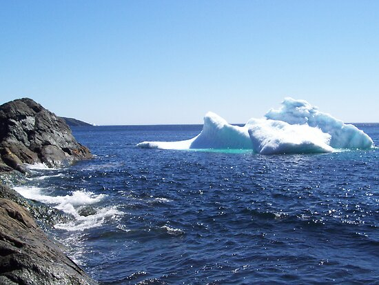 Iceberg...at the beach by rog99