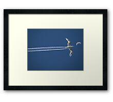 3654 Framed Print