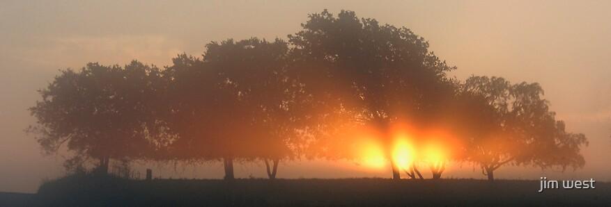 Ground fog before sunrise by jim west