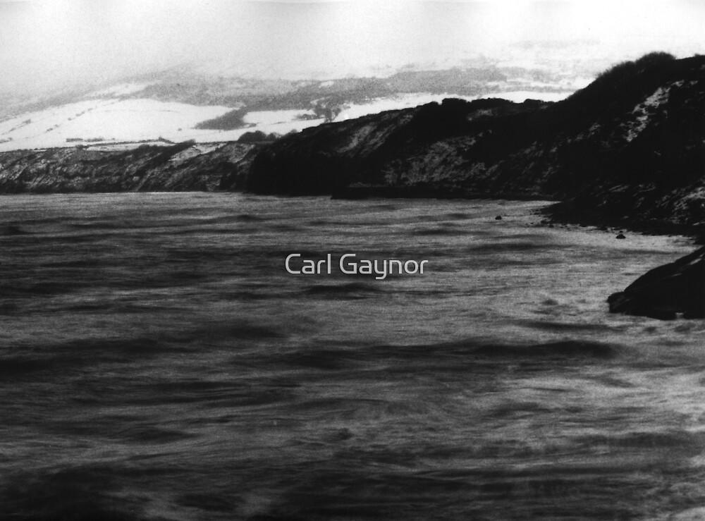 Winter - North Sea  by Carl Gaynor
