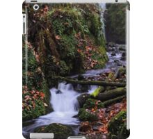 Dollar Glen iPad Case/Skin