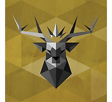 House Baratheon of Storm's End Photographic Print