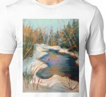 BEAUTIFUL WINTER BROOK BEST SELLING CANADIAN PAINTINGS AND PRINTS BY CANADIAN ARTIST CAROLE SPANDAU Unisex T-Shirt