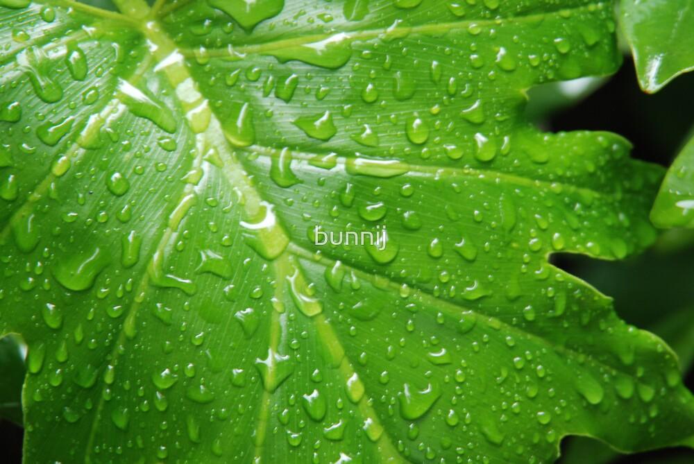 Vibrant Green by bunnij