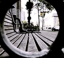 Park Benches by Christopher Parr