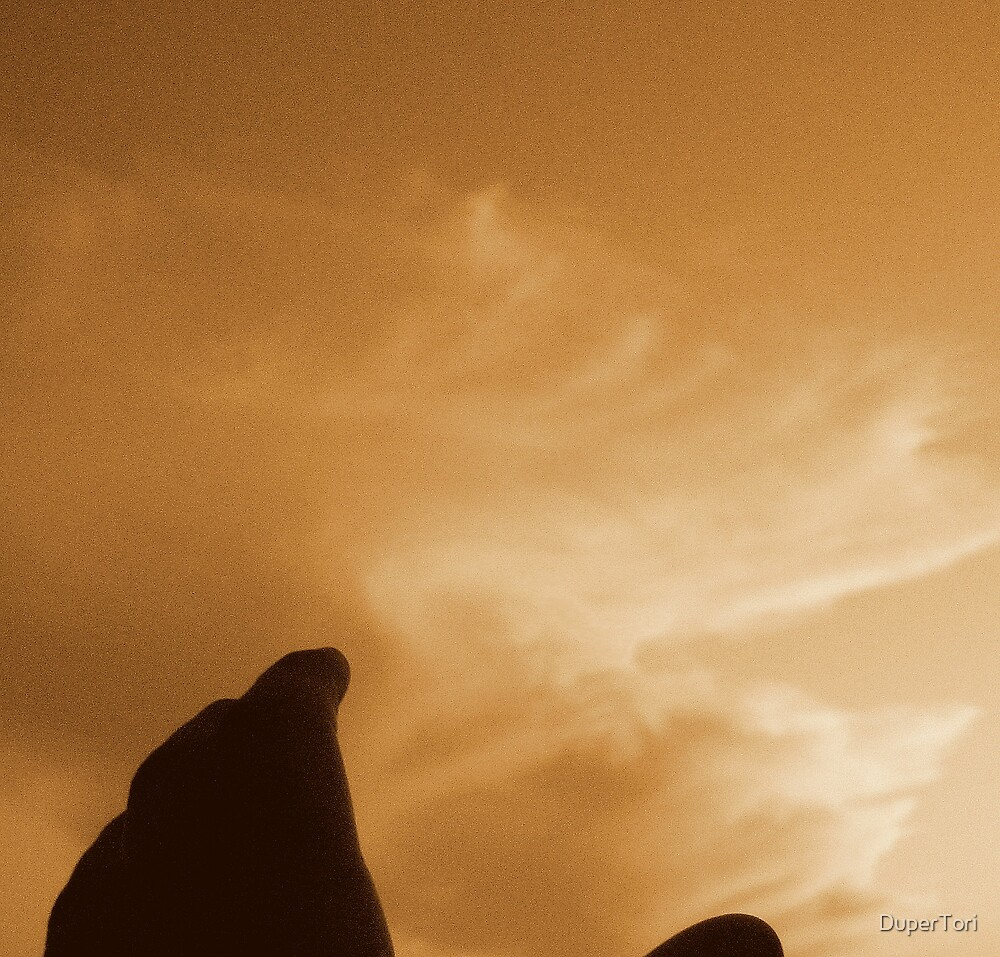 Reach For The Sky by DuperTori