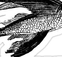 FLYING FISH (SOLOMON ISLANDS) Sticker