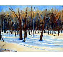 WINTER SCENE LANDSCAPE CANADIAN ART PAINTINGS Photographic Print