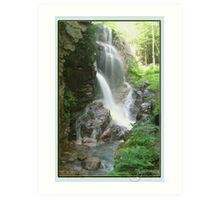 Avalanche Waterfalls, NH Art Print