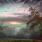 Country Autumn by Igor Zenin