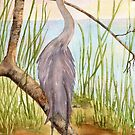 Great Blue Heron- Morning Reflections by Diane Hall