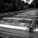 Tracks by slippinghalo