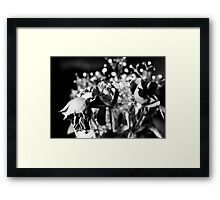 Weeping Framed Print