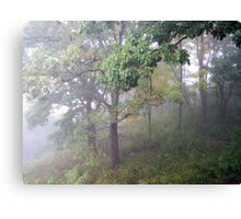 Foggy Shenandoah Mountain Top Canvas Print