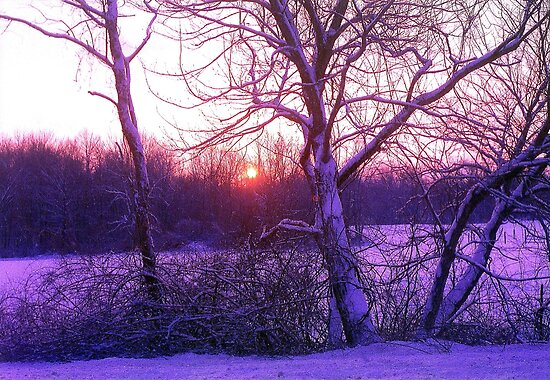 Winter Sunset by Alberto  DeJesus