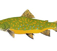 Brook Trout by fishfolkart