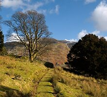 Grisedale Views by Stephen Smith