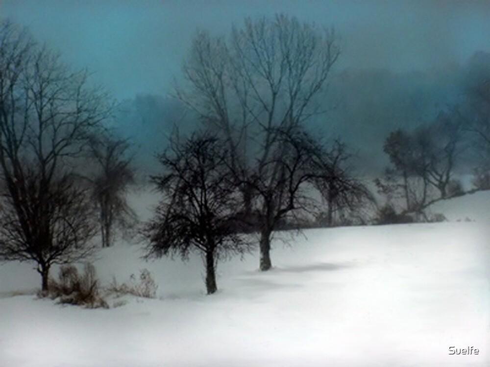 """""""Trees in Winter"""" by Suelfe"""
