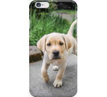 Puppy!!! iPhone Case/Skin