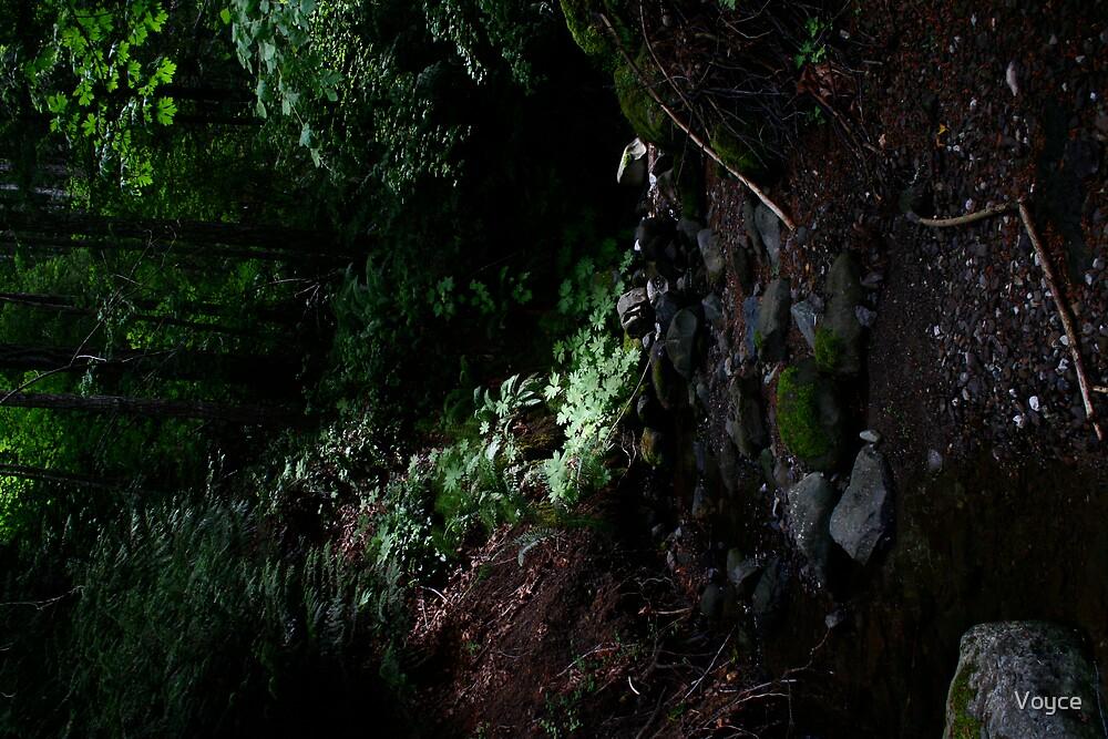 litte creeks end by Voyce