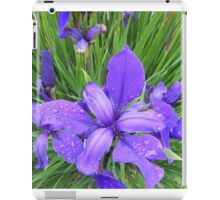 Dew Drops on Iris iPad Case/Skin
