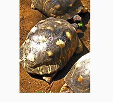 HAWKSBILL TURTLES ON NOSY KOMBA EATING BANANA Unisex T-Shirt