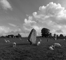 Avebury Stone Circle by Tony Nicholls