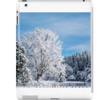 Winter Wonderland! iPad Case/Skin
