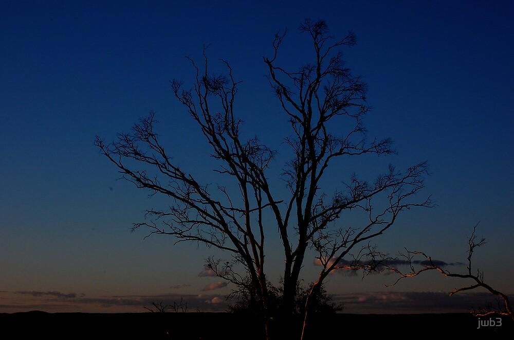 Blue tree by jwb3