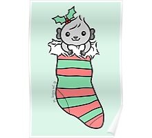 Grey Guinea-pig in Christmas Stocking  Poster