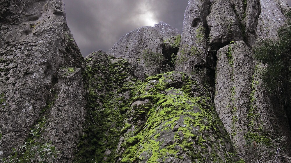 The Trouble With Lichen by eclectic1