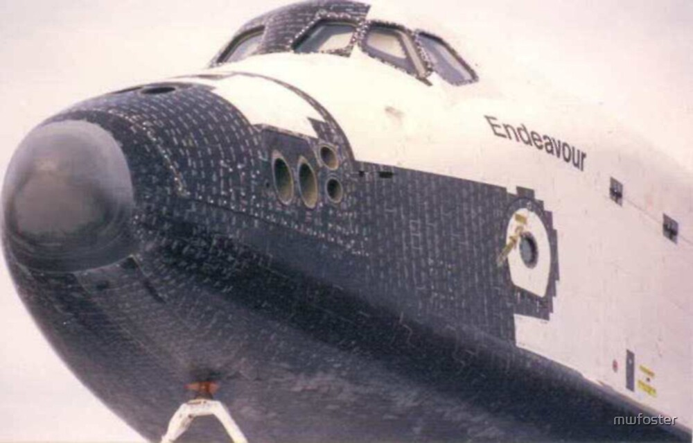 Endeavour by mwfoster