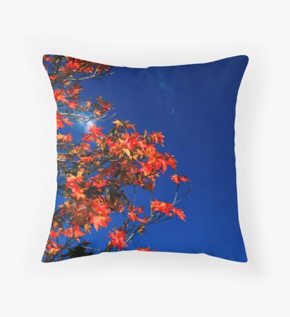 Last thing.. Throw Pillow