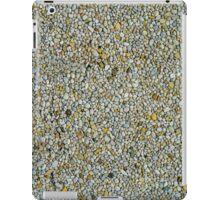 70s Style Retro Pebble Dash Backgound Texture iPad Case/Skin