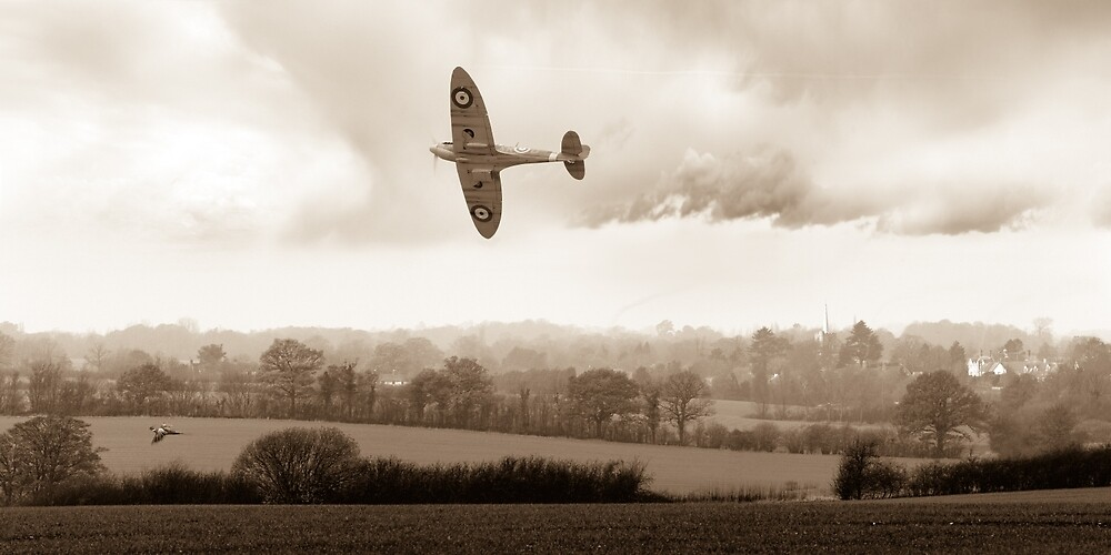 Eagle over England, sepia version by Gary Eason + Flight Artworks