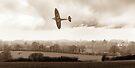 Eagle over England, sepia version by Gary Eason