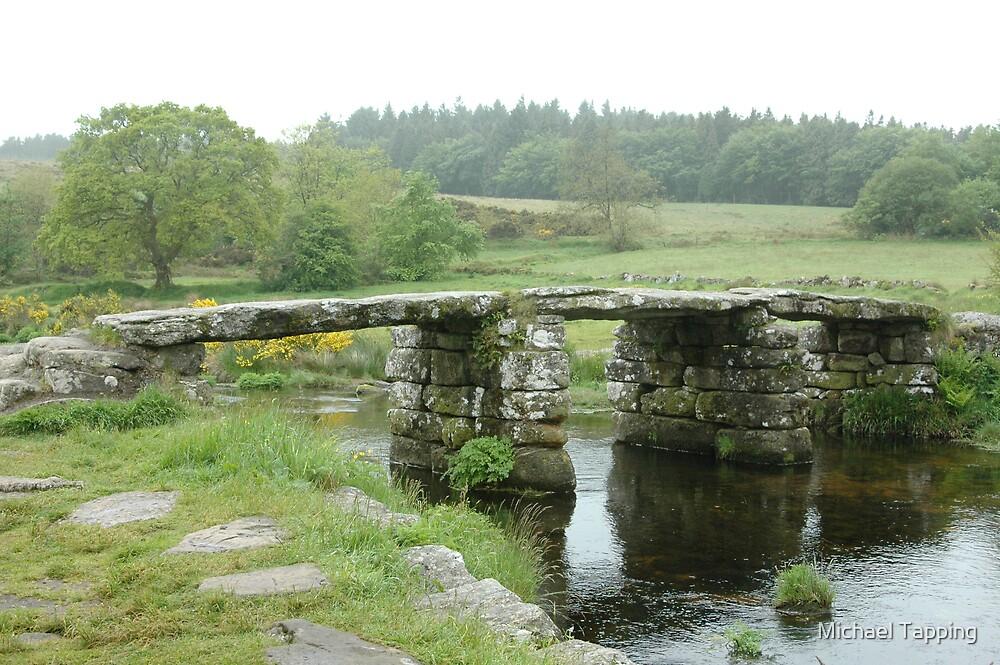 Clapper Bridge - Dartmoor UK by Michael Tapping