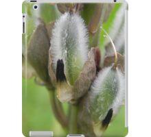 Lupin Going To Seed iPad Case/Skin